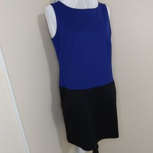 Ann Taylor Loft Petites Color Block Dress 10P